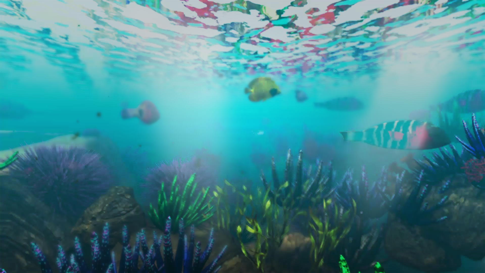 Underwater Visualisation