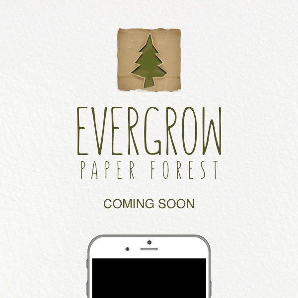Evergrow Paper Forest
