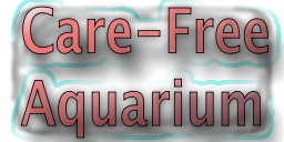 Care-Free Aquarium