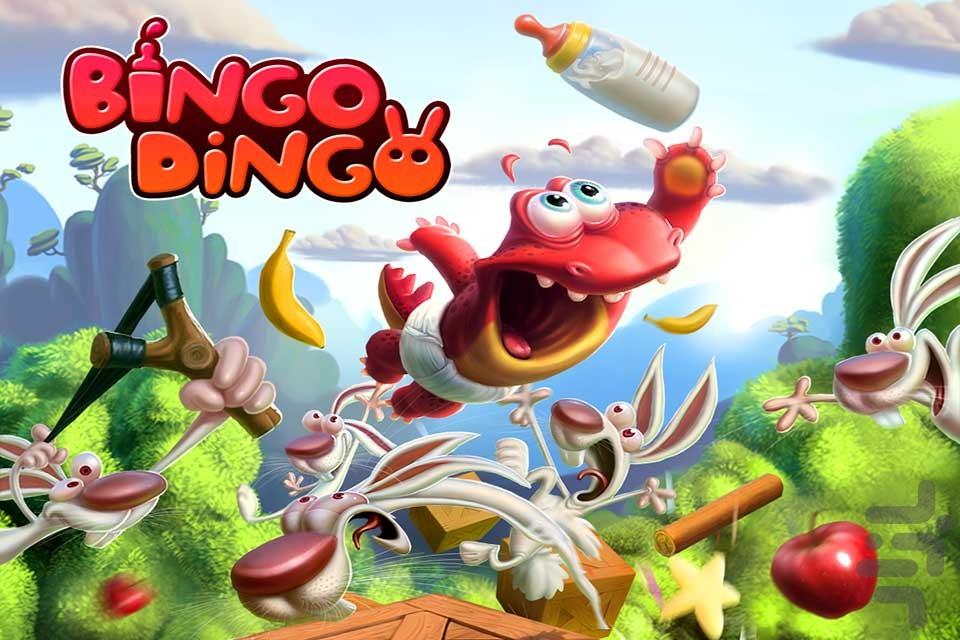 Bingo Dingo