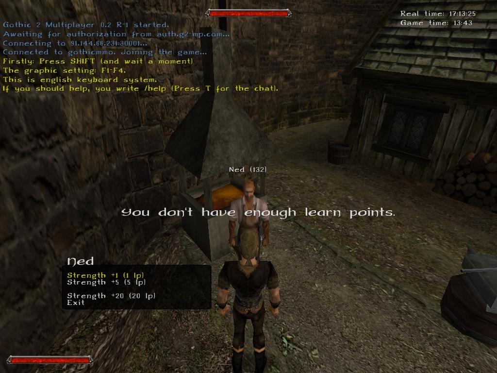 Gothic 2 MMORPG