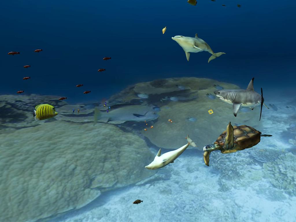 Aquarium VR