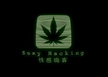 Sexy Hacking | エロいヘッキング | 性感骇客