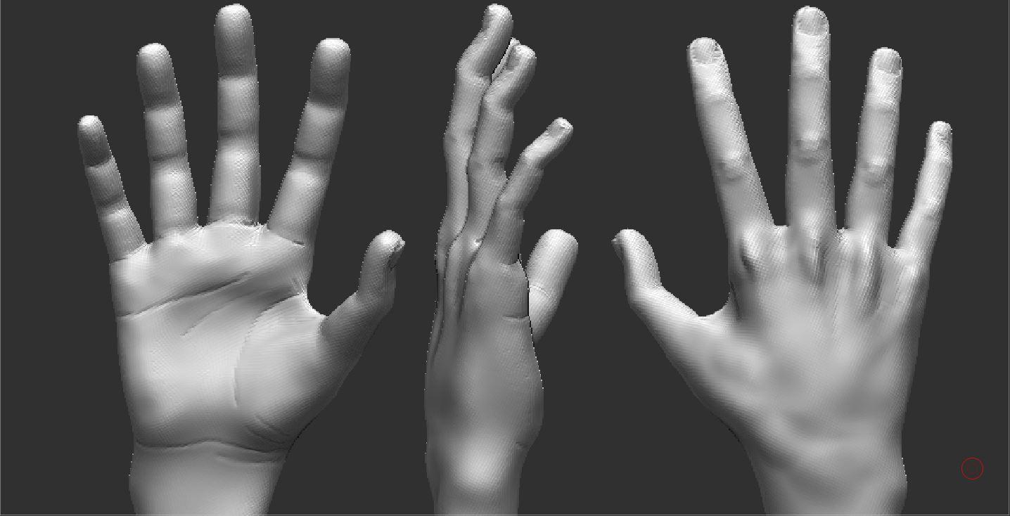 Zbrush Study: Hand