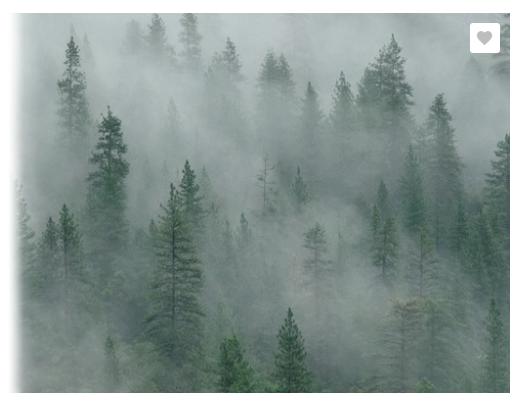 Dynamic Volumetric Fog