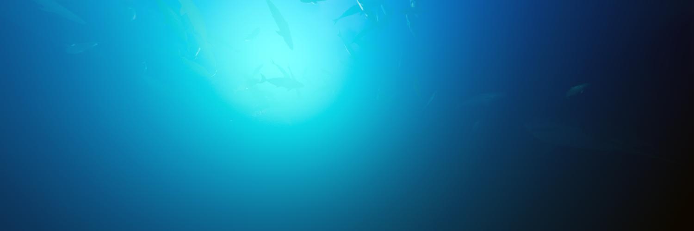 Underwater Survival Sim