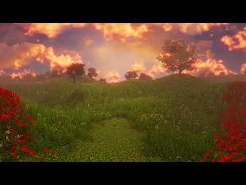 USAA Memorial Day 2018 -  Poppy Rememberance VR