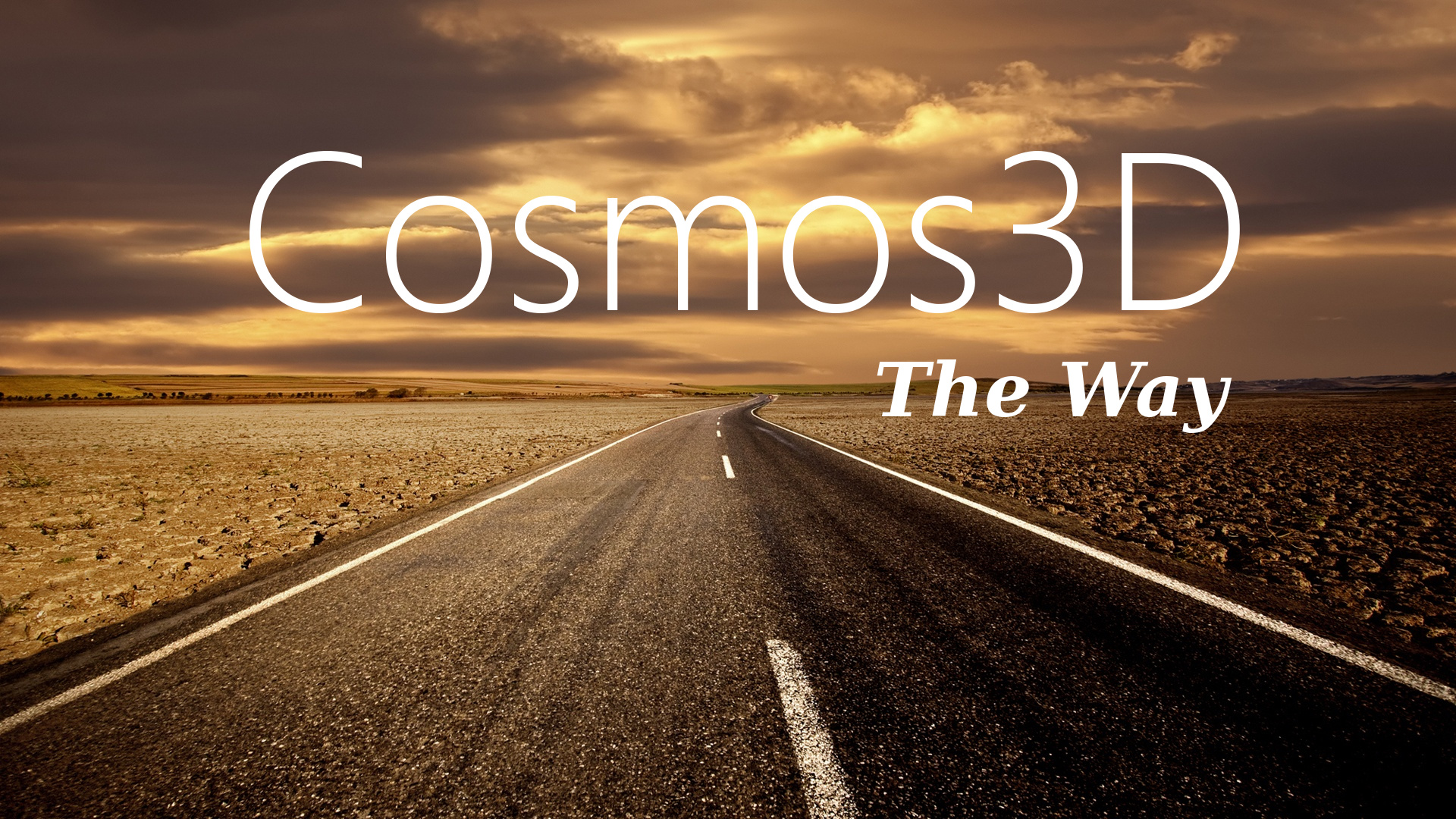 Cosmos3D - The Way