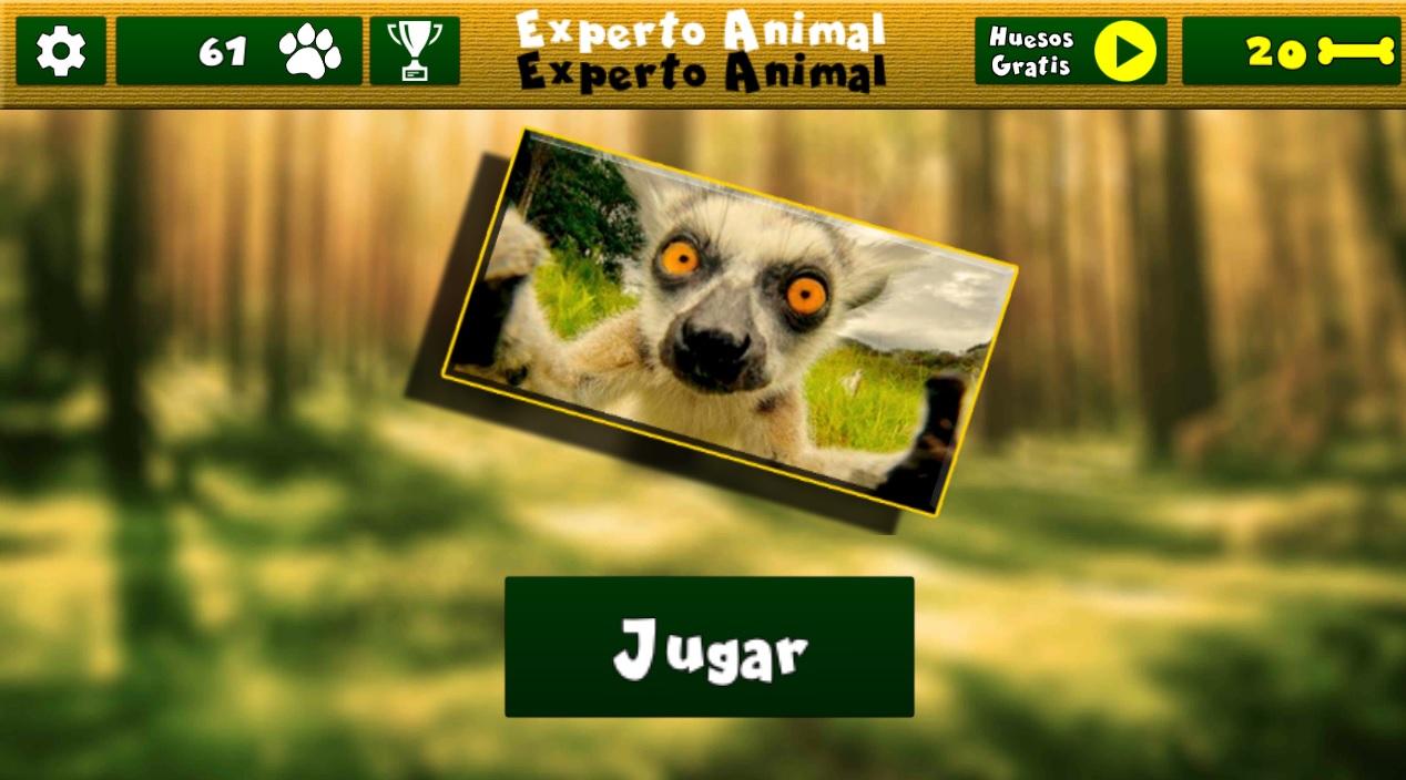 Experto Animal