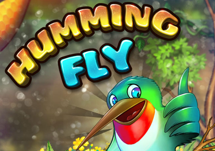 Tiny Hummingbird Flying Games