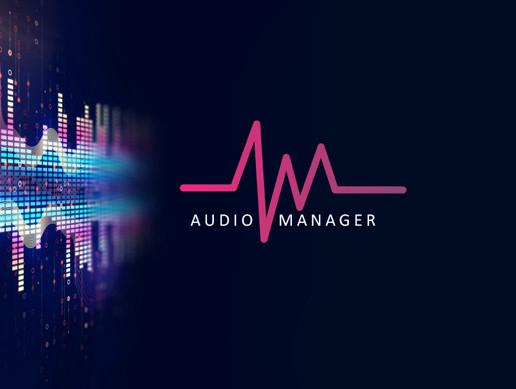 AudioManager