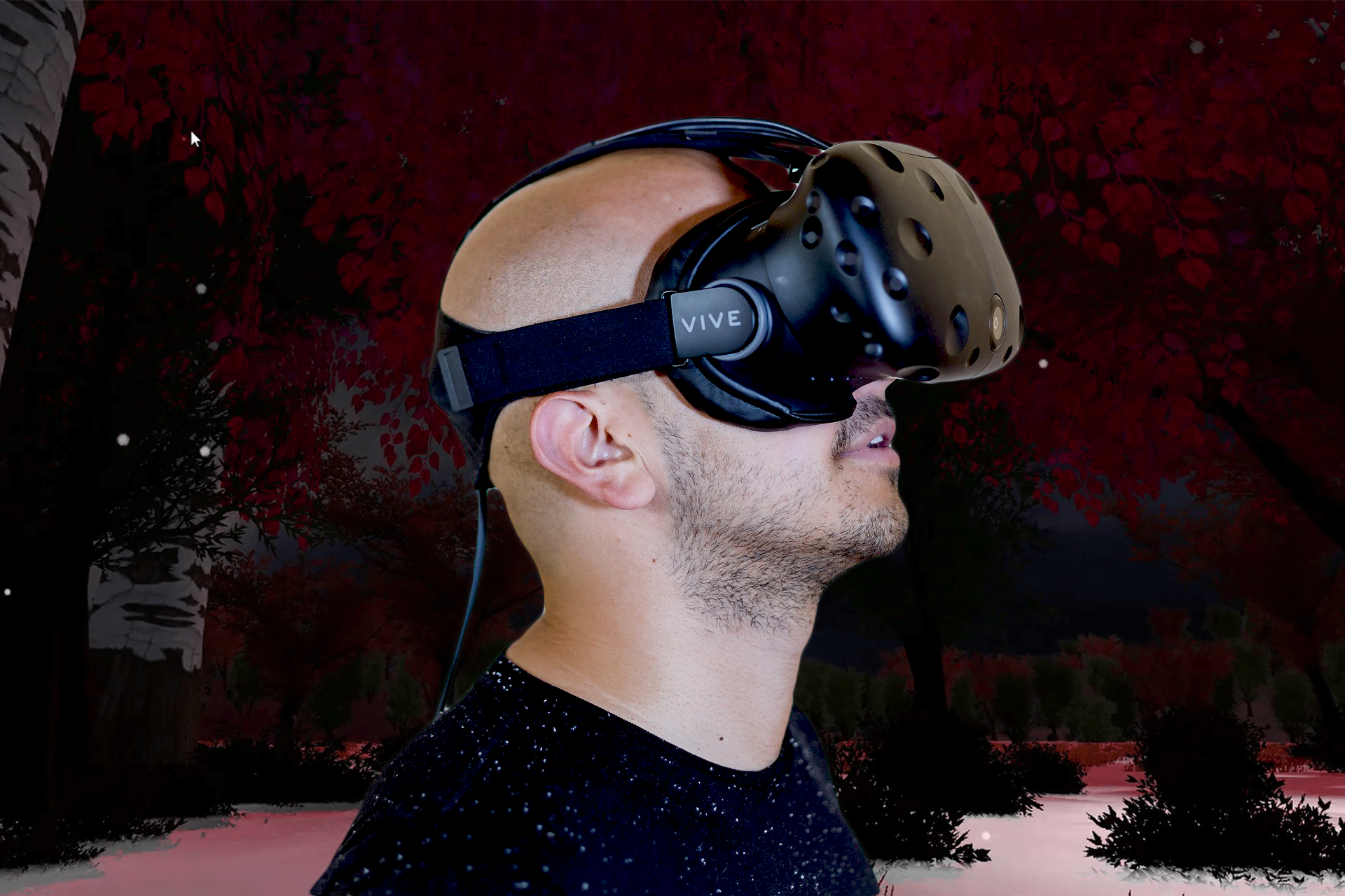 Poem Mashup: A VR Experience