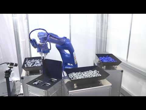 Robotic grasping of various objects in bulk