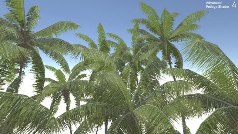Coconut Palm Tree Pack