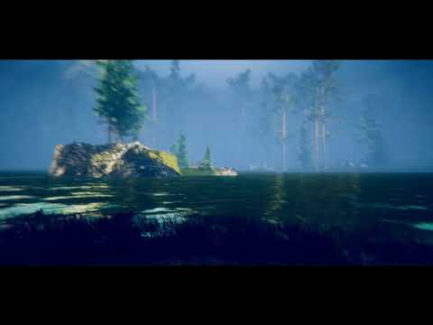 Unity Forest Environment