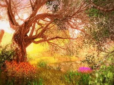 Virtual 3D Nature