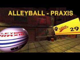 Game: AlleyBall - Praxis