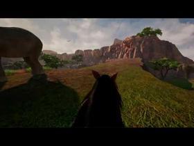 Stallion Adventures