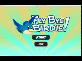 Fly Bye Birdie