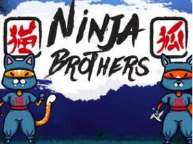 Ninja Brothers
