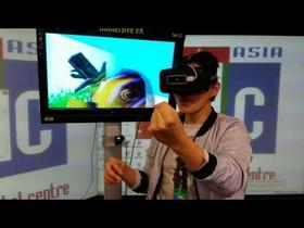 Virtual Swimming with Fishes