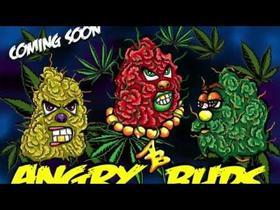Angry Buds