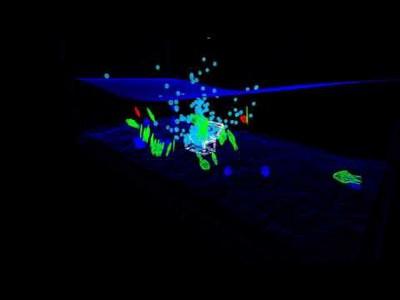 OpenGL Aquarium