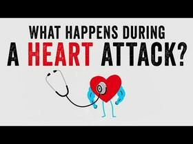 TED Ed: Heart Attacks