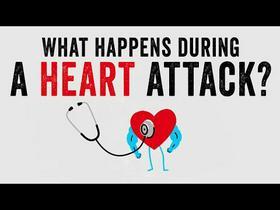 TED Ed: Heart Attacks